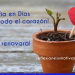 Reflexiones – Confianza en Dios