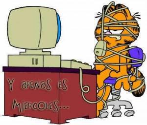 Feliz Miércoles Garfield