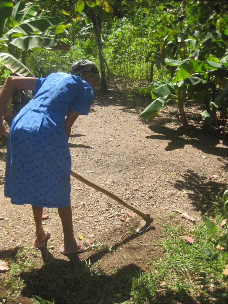 La gratitud - anciana sembrando